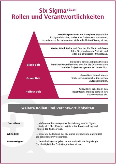 Infografik Six Sigma Rollen