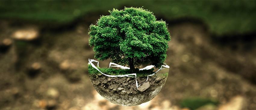 Umweltmanagement hilft Unternehmen